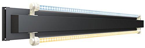 Juwel Aquarium 46505 MultiLux LED Einsatzleuchte, 55cm
