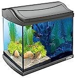 Tetra AquaArt Discovery Line LED Aquarium-Komplett-Set (inklusive LED-Beleuchtung, Tag- und Nachtlichtschaltung, Innenfilter und Aquarienpumpe, ideal für Garnelen) 20 Liter anthrazit