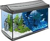 Tetra AquaArt Discovery Line LED Aquarium-Komplett-Set (inklusive LED-Beleuchtung, Tag- und Nachtlichtschaltung, EasyCrystal Innenfilter und Aquarienheizer, ideal für Zierfische) 60 Liter anthrazit