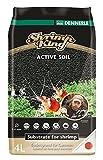 Dennerle Shrimp King Active Soil 4 Liter - Bodengrund für Garnelen und Aquascaping
