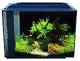 Fluval Spec XV Aquarium, mit 60L Fassungsvermögen, in schwarz