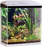 Sweetypet Aquarien: Nano-Aquarium-Komplett-Set mit LED-Beleuchtung, Pumpe und Filter, 25 l (Fischbecken)