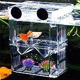 Aufzuchtbecken Aquarium, NETUEM Acryl Double Layer Fische Aufzuchtbehälter/Ablaichkasten/Aufzuchttank/Zuchtbecken für Guppy Garnelen Mollys, Aquarium Babybecken Isolationskiste Jungfiisch,Lsize