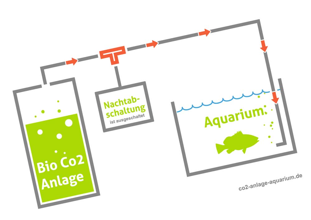 Bio CO2-Anlage im Aquarium