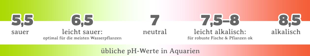 pH-wert im Aquarium