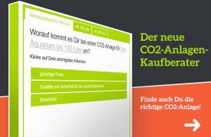CO2 Anlagen Berater