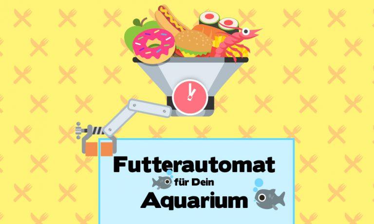 Futterautomat fürs Aquarium