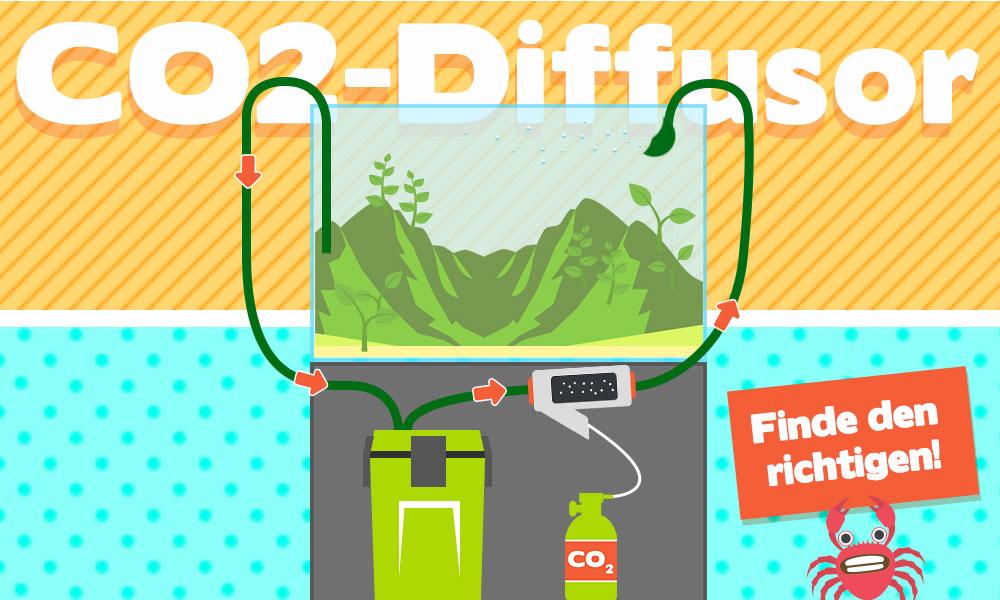 CO2-Diffusor im Aquarium