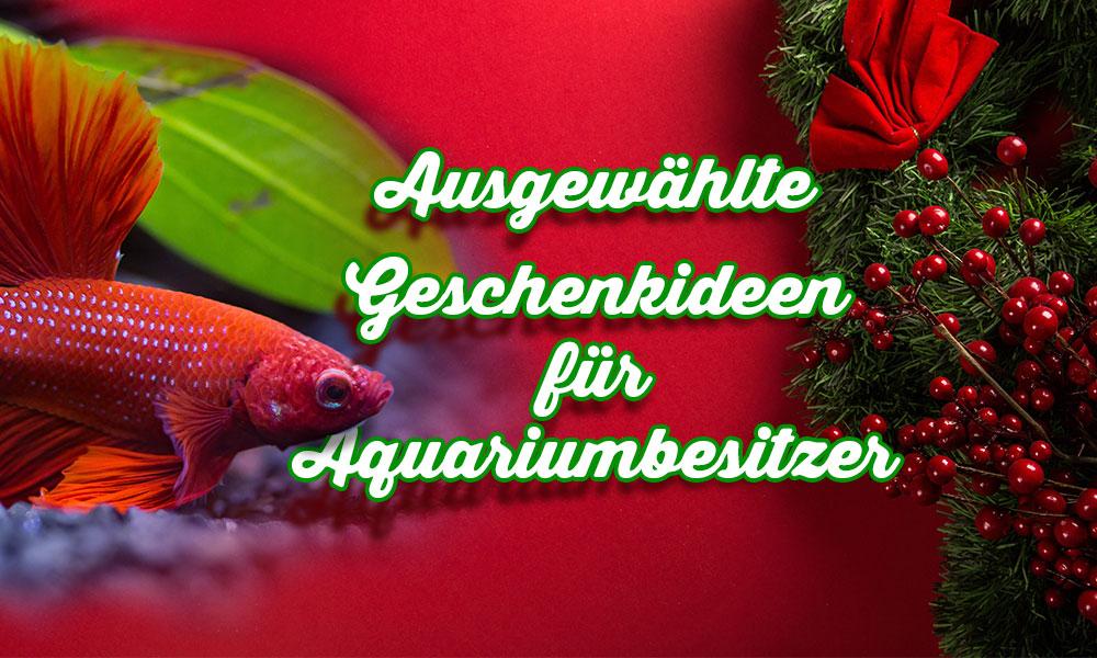 Weihanchtsgeschenke für Aquariumbesitzer