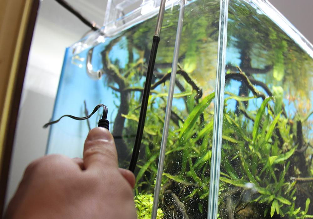 Aquarium-Beleuchtung abstellen