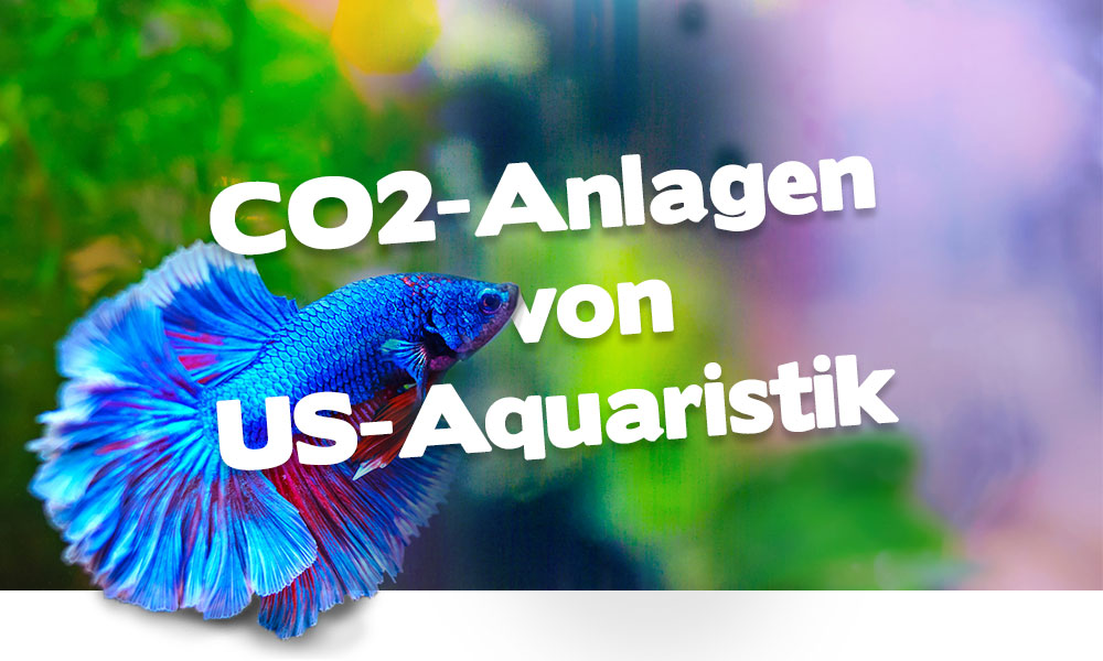 CO2-Anlagen von US-Aquaristik