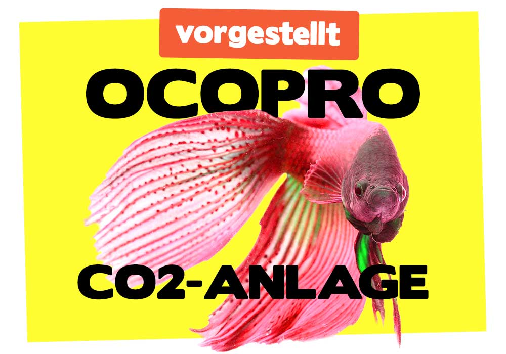 Ocopro CO2-Anlage