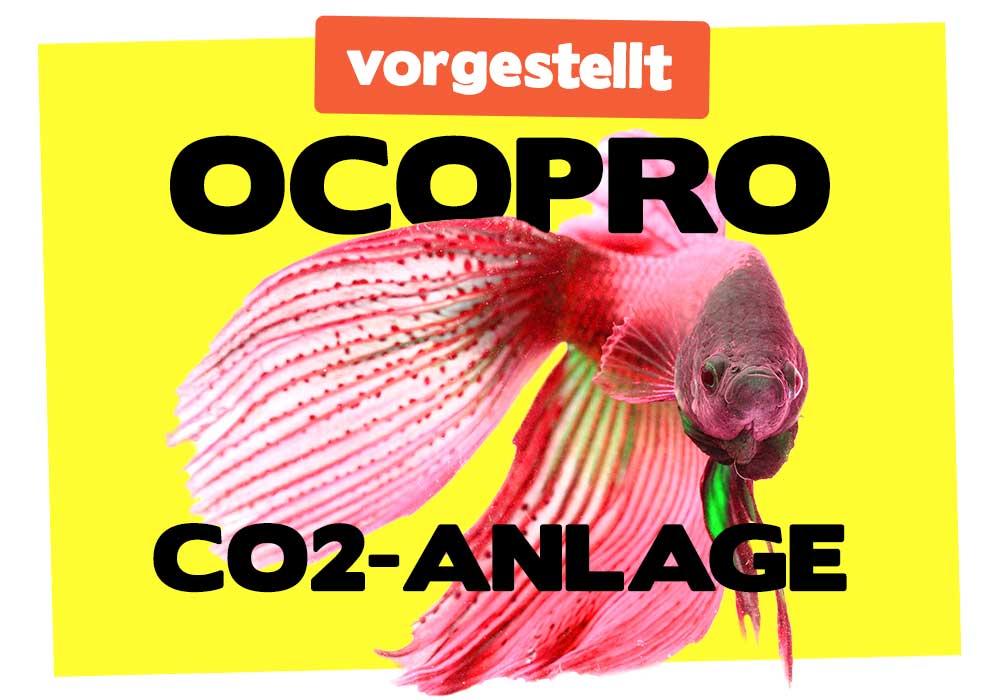 Ocopro CO2-Anlage