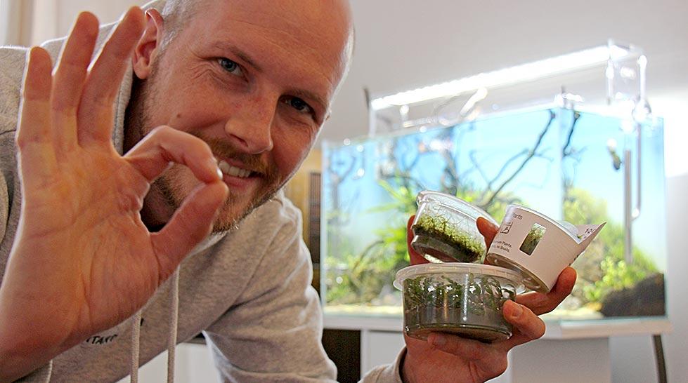 In-Vitro-Aquarienpflanzen – die sichere, moderne Art, ein Aquarium zu bepflanzen! 2