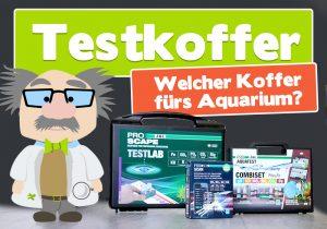 Welcher Testkoffer fürs Aquarium