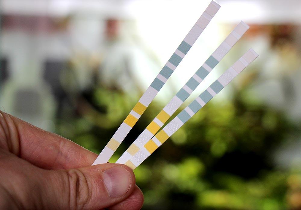 schnell Wassertesten mit Streifentests