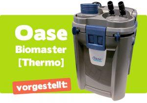 Oase Biomaster Thermo