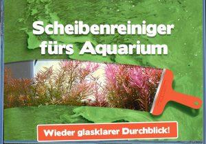 Scheibenreiniger im Aquarium