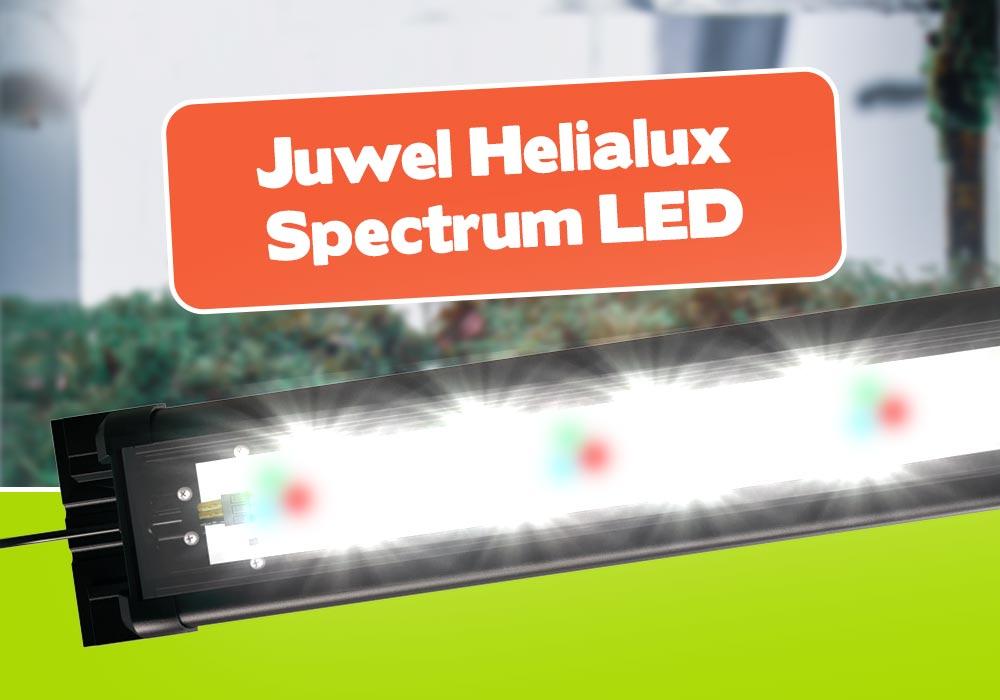 Juwel Helialux Spectrum mit HeliaLux SmartControl. 6