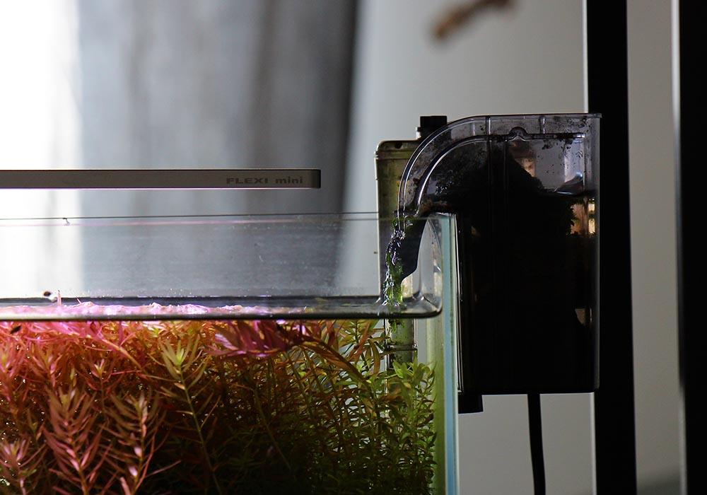 Technik im Garnelenaquarium