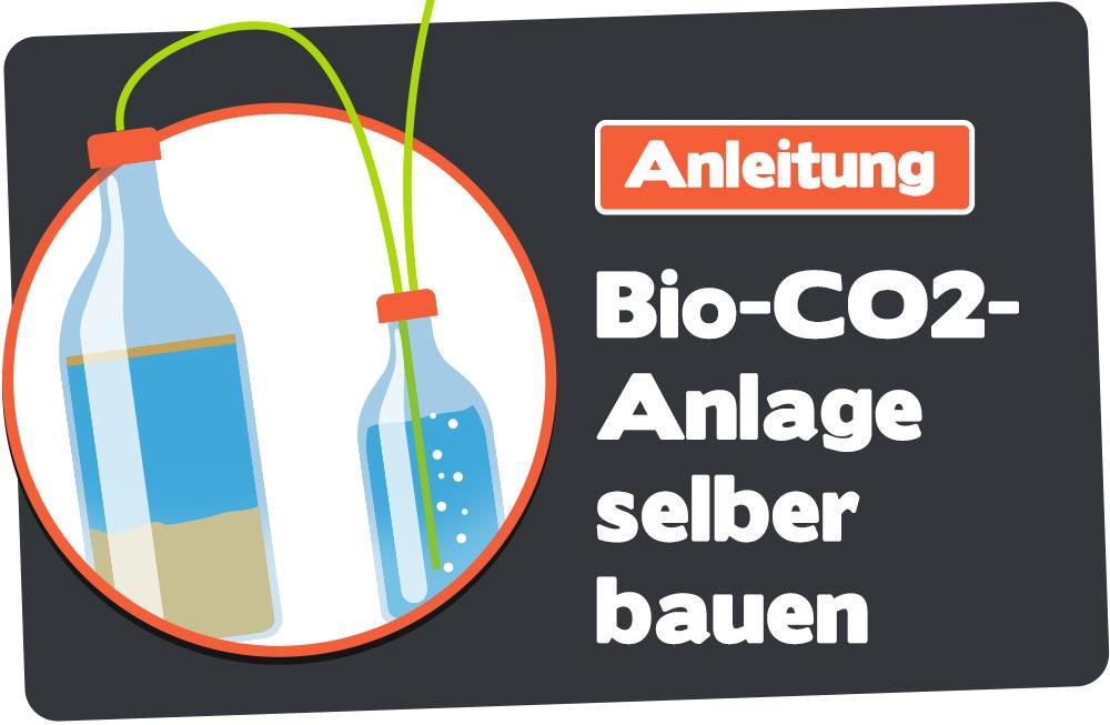 Anleitung Bio-CO2-Anlage selber bauen
