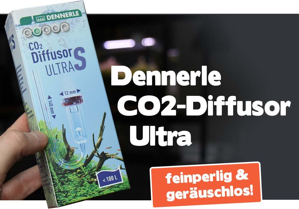 Dennerle CO2-Diffusor Ultra: fast 100 % geräuschlos!😴 2