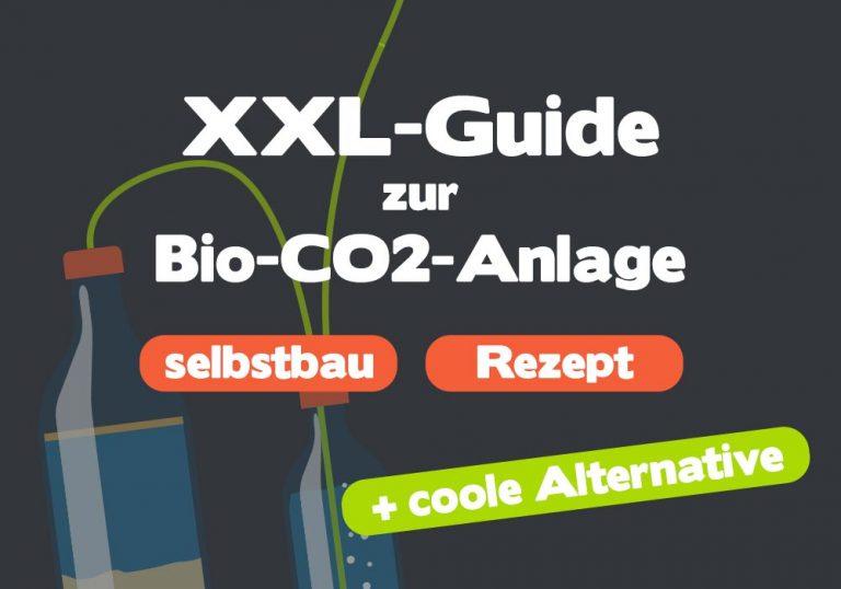 Bio-CO2-Anlage: Selbstbau-Anleitung, Rezept + Alternative