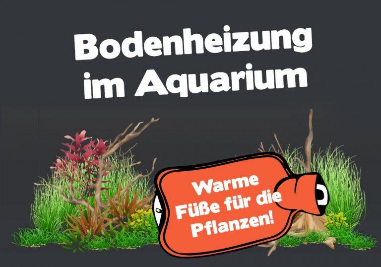 Bodenheizung und Bodenfluter im Aquarium