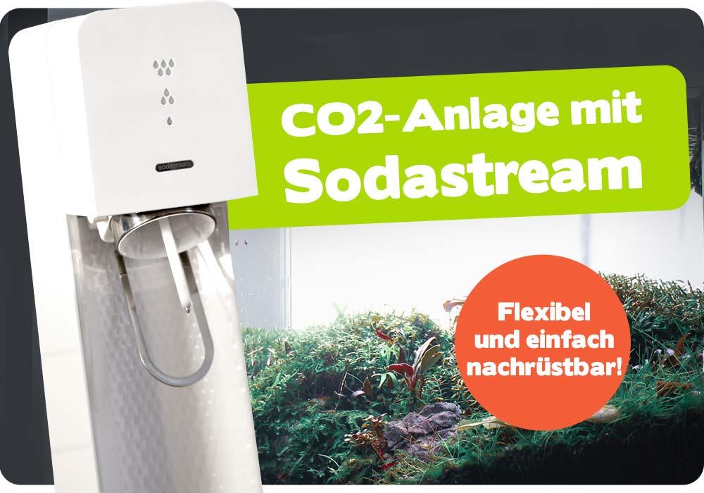So easy nutzt Du die CO2-Anlage mit Sodastream-Flasche 🌿 3