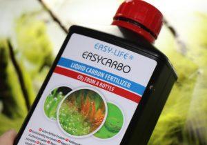 Froschlaichalgen mit Easy Carbo entfernen