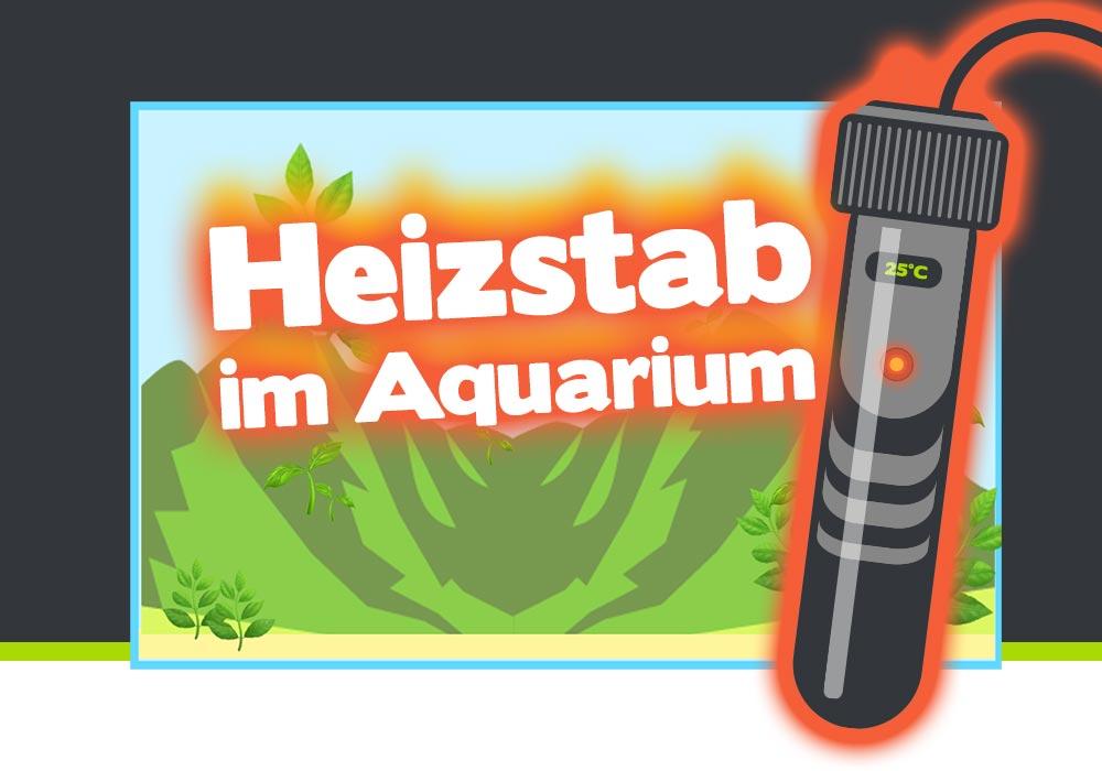 Heizstab im Aquarium