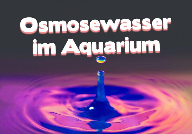 Osmosewasser im Aquarium